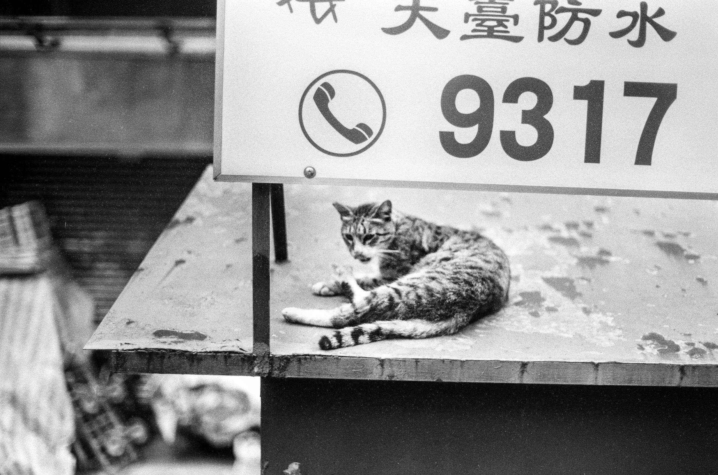 2012China13.jpg