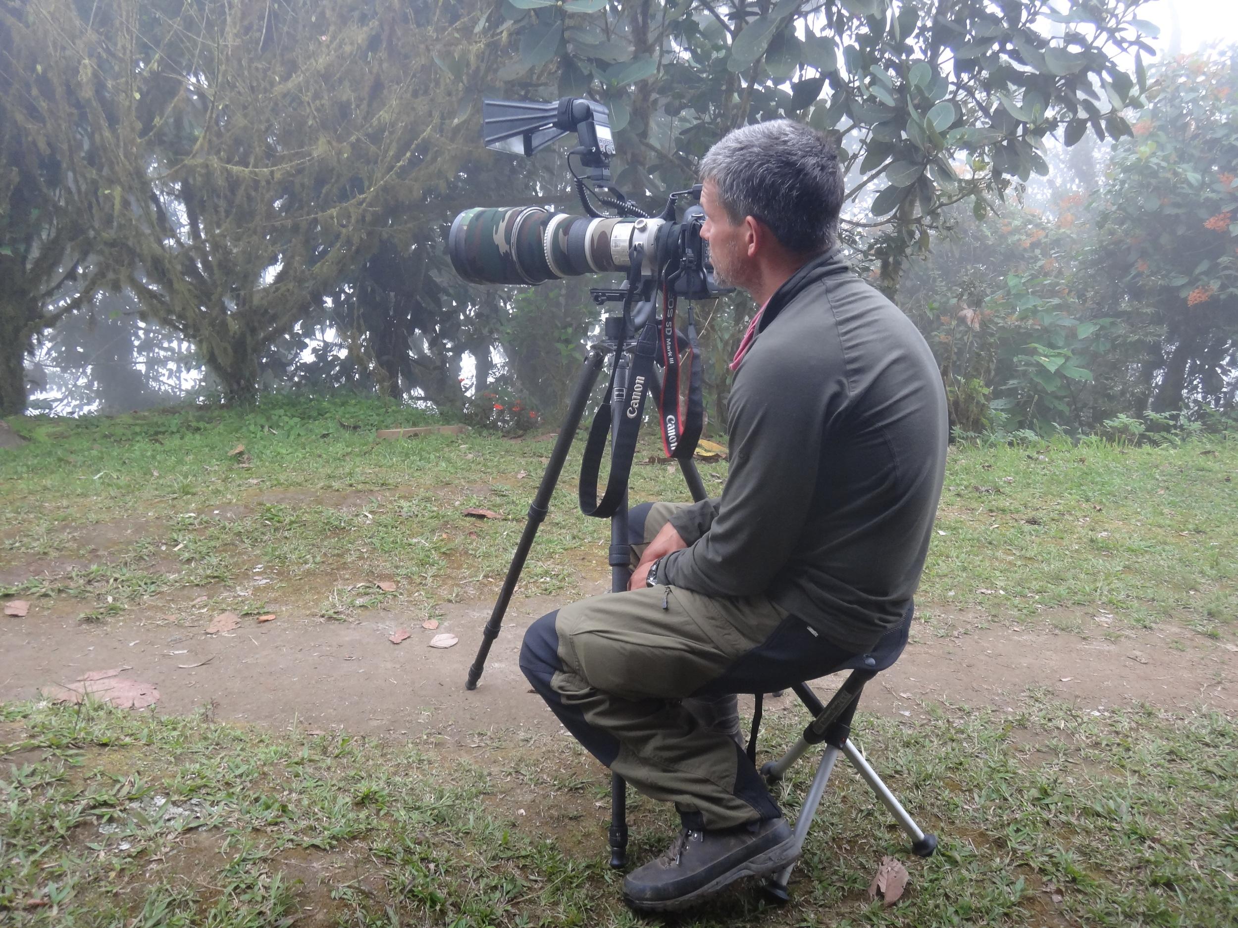 Nebelwald  Ecuador  Mindo  Kolibri-ansitz  2014