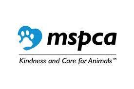 When it was in Edgartown, Ben volunteered walking dogs and cleaning kennels at the MSPCA.