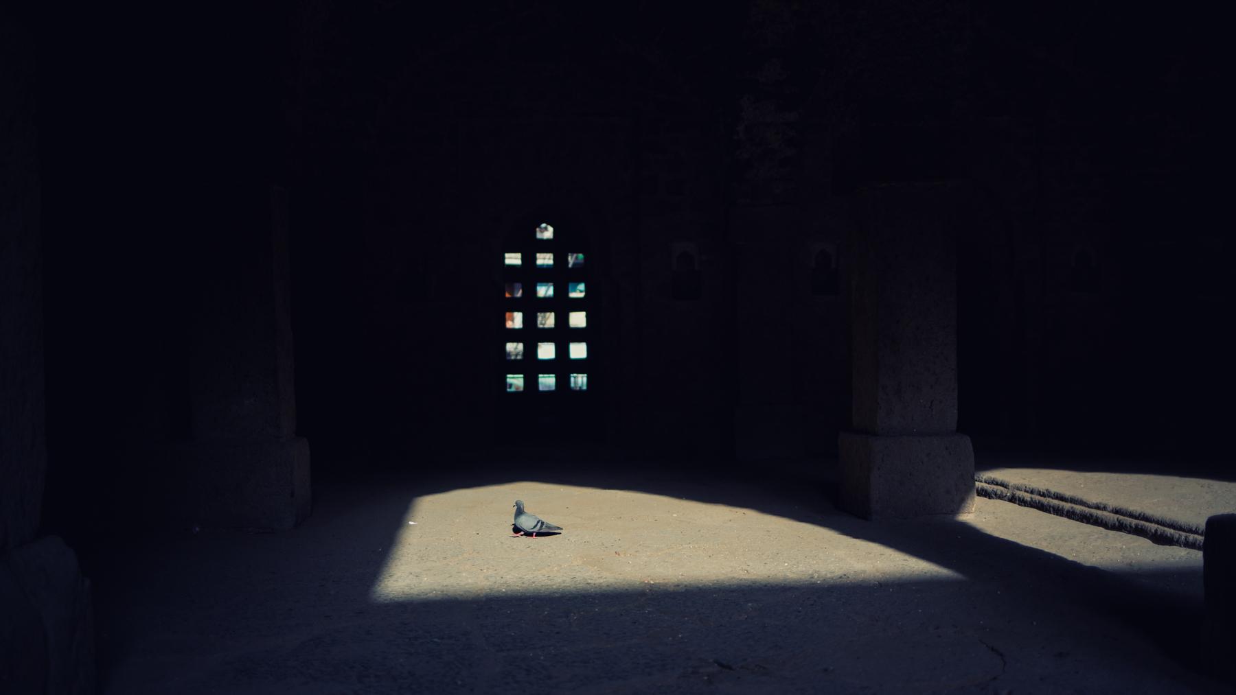 Khoj_VivekM--29.jpg
