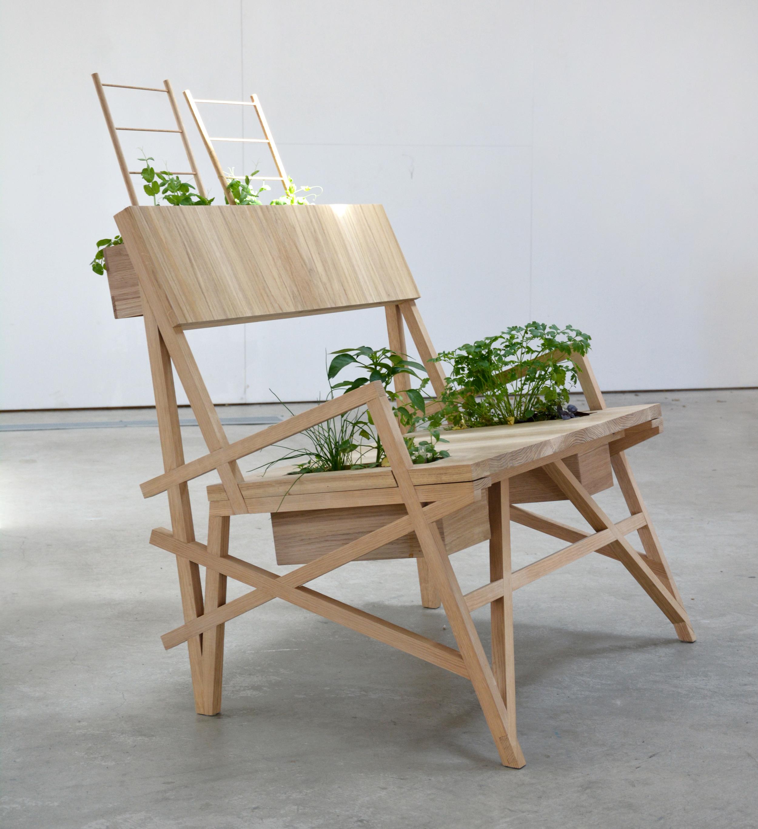Chelsea lemon furniture design canberra australia plant triangulation Chair