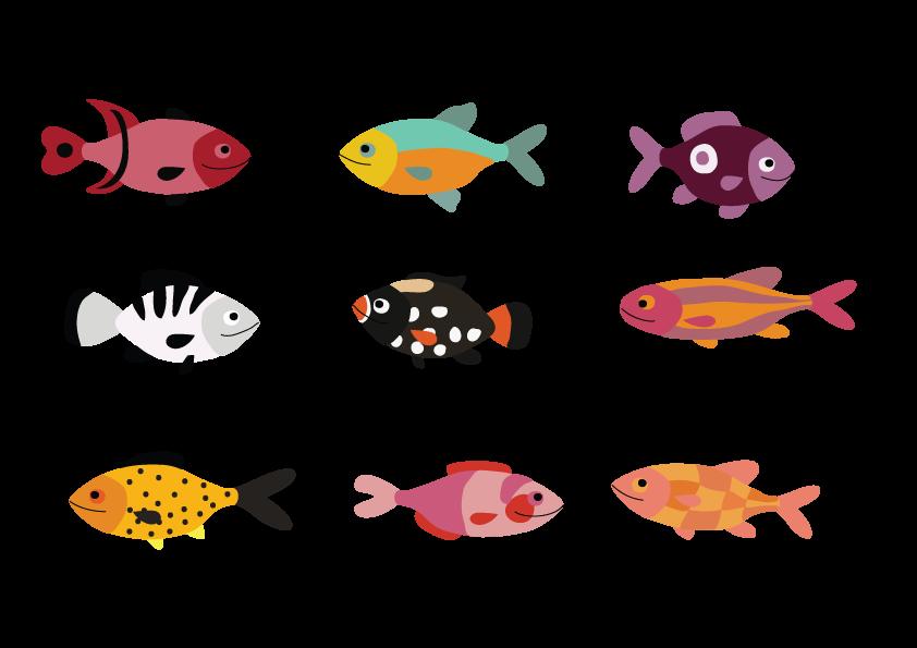 Individual-Fish-Sample---Chelsea-Lemon.png