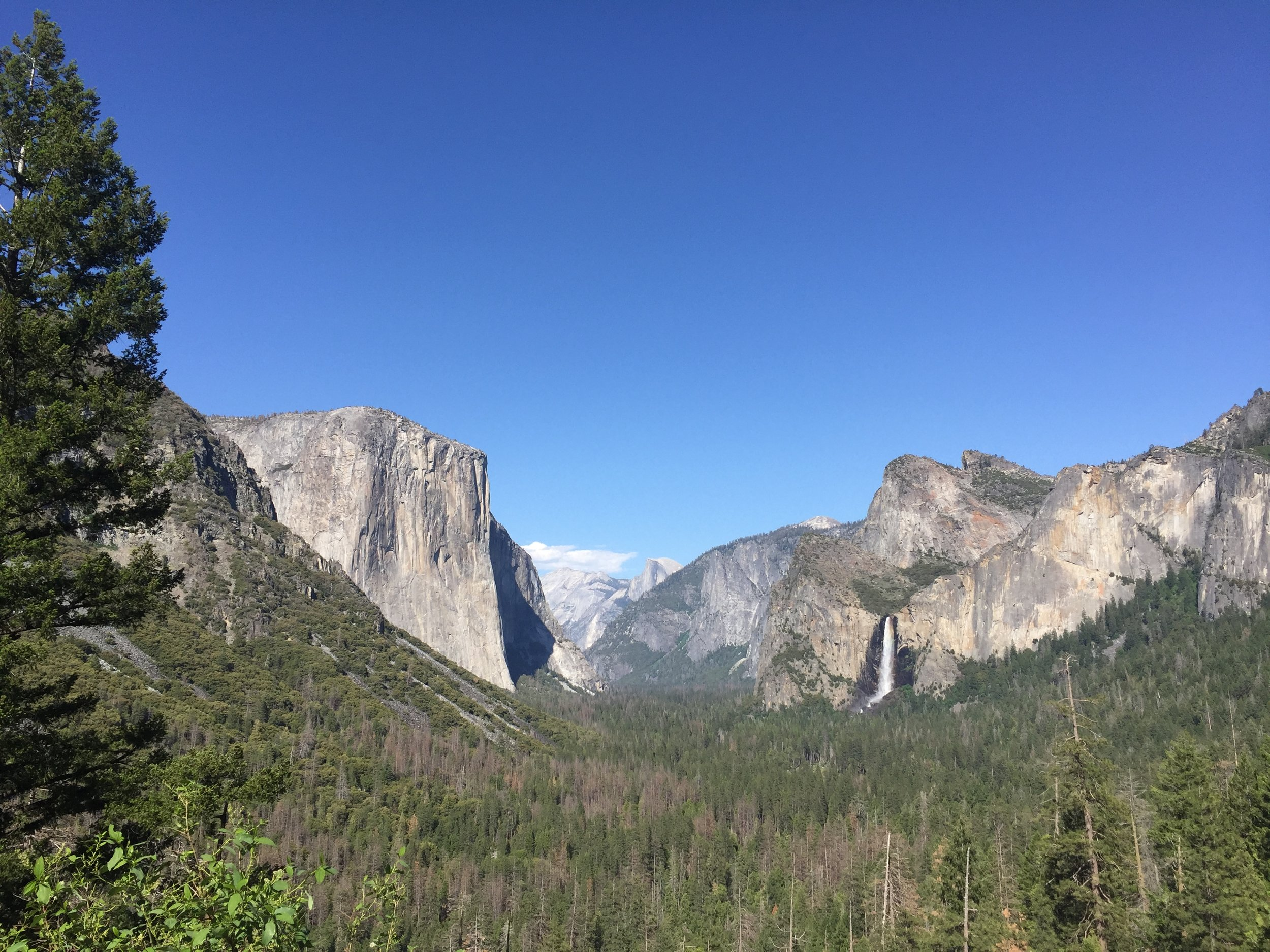 As a California native, it's really a shame I hadn't been here sooner, but I made it with family and friends who are like family. It was grand.