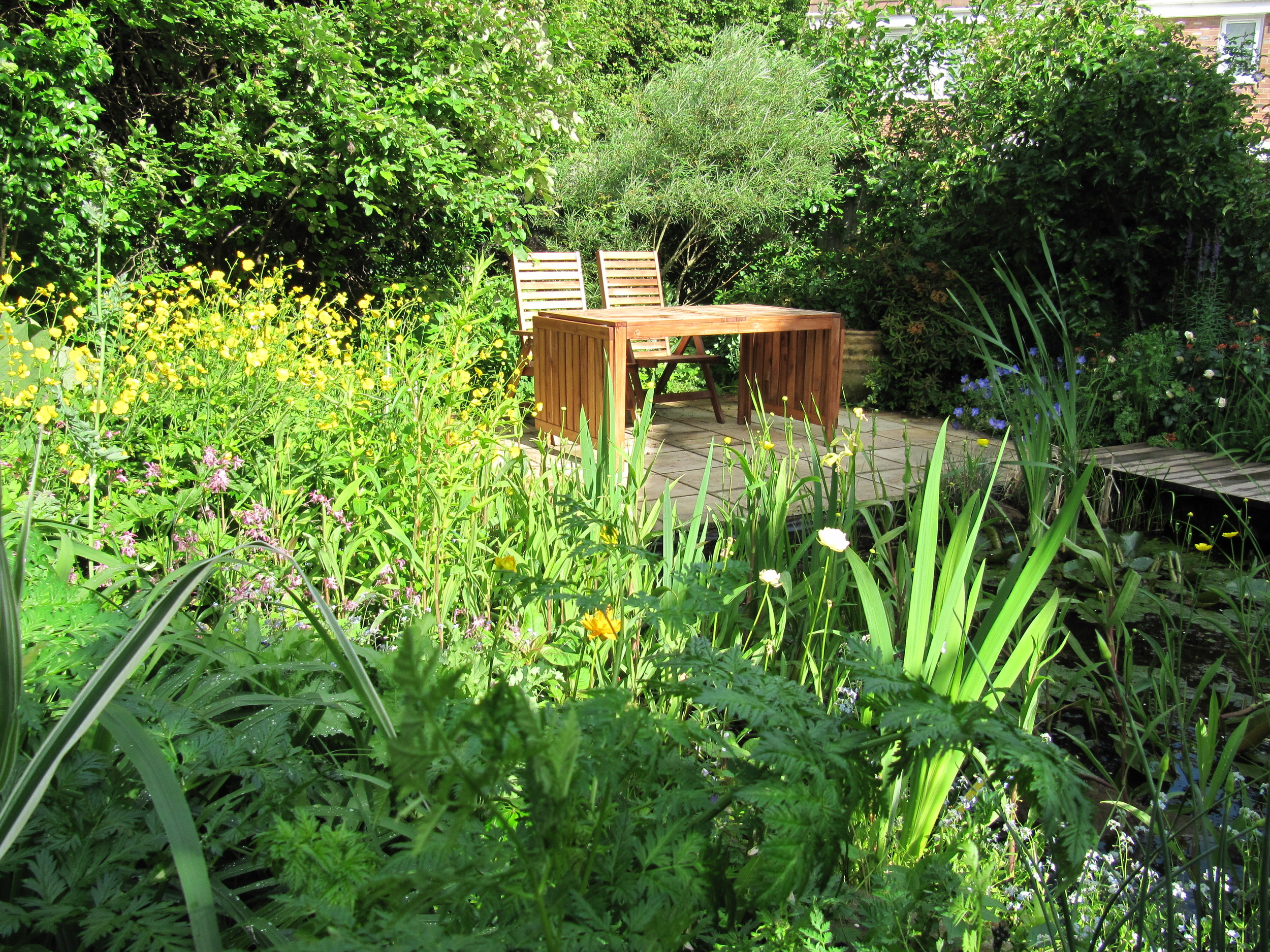 A colourful wildlife garden behind a new estate house, not a boring fence in sight!.