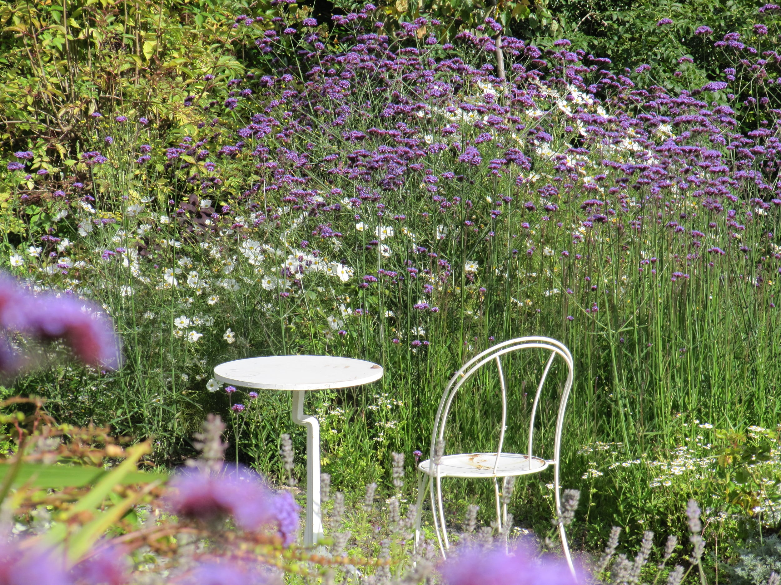 A perfect summer seat for afternoon tea or a glass of sparkling wine among the dog daisies and Verbena.
