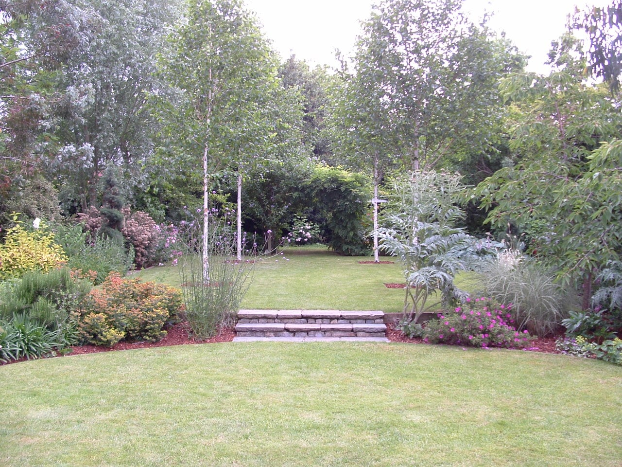 Four white birch trees, Betula utilis 'Jaqumontii'form a frame to a view though formal lawns flanked by dense borders. Steps in the grass separate the garden rooms.