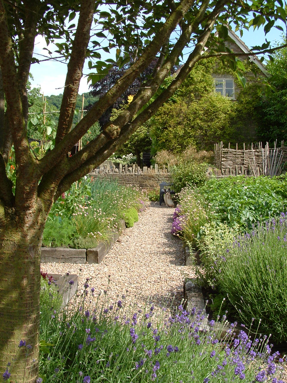 Straight gravel paths separate the formal raised timber beds of a formal vegetable garden