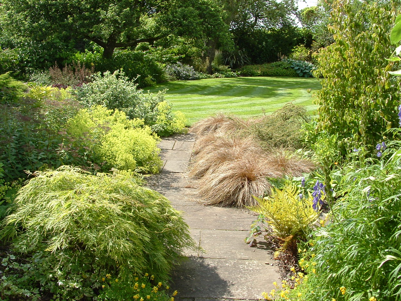 Tactile planting spills softly over a natural stone path to a sweeping lawn