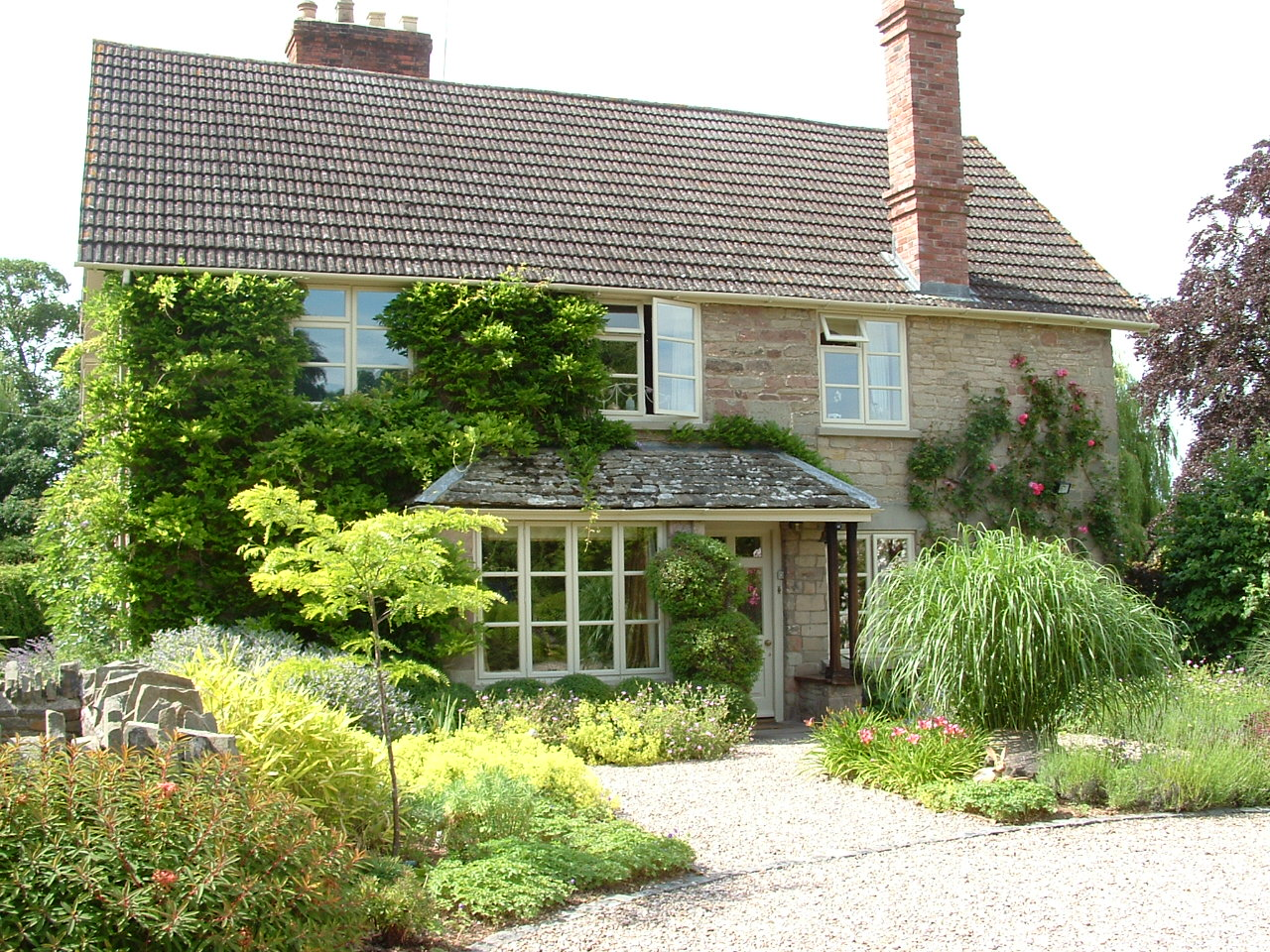 The front garden of a stone cottage covered in climbers and framed by architectural planting