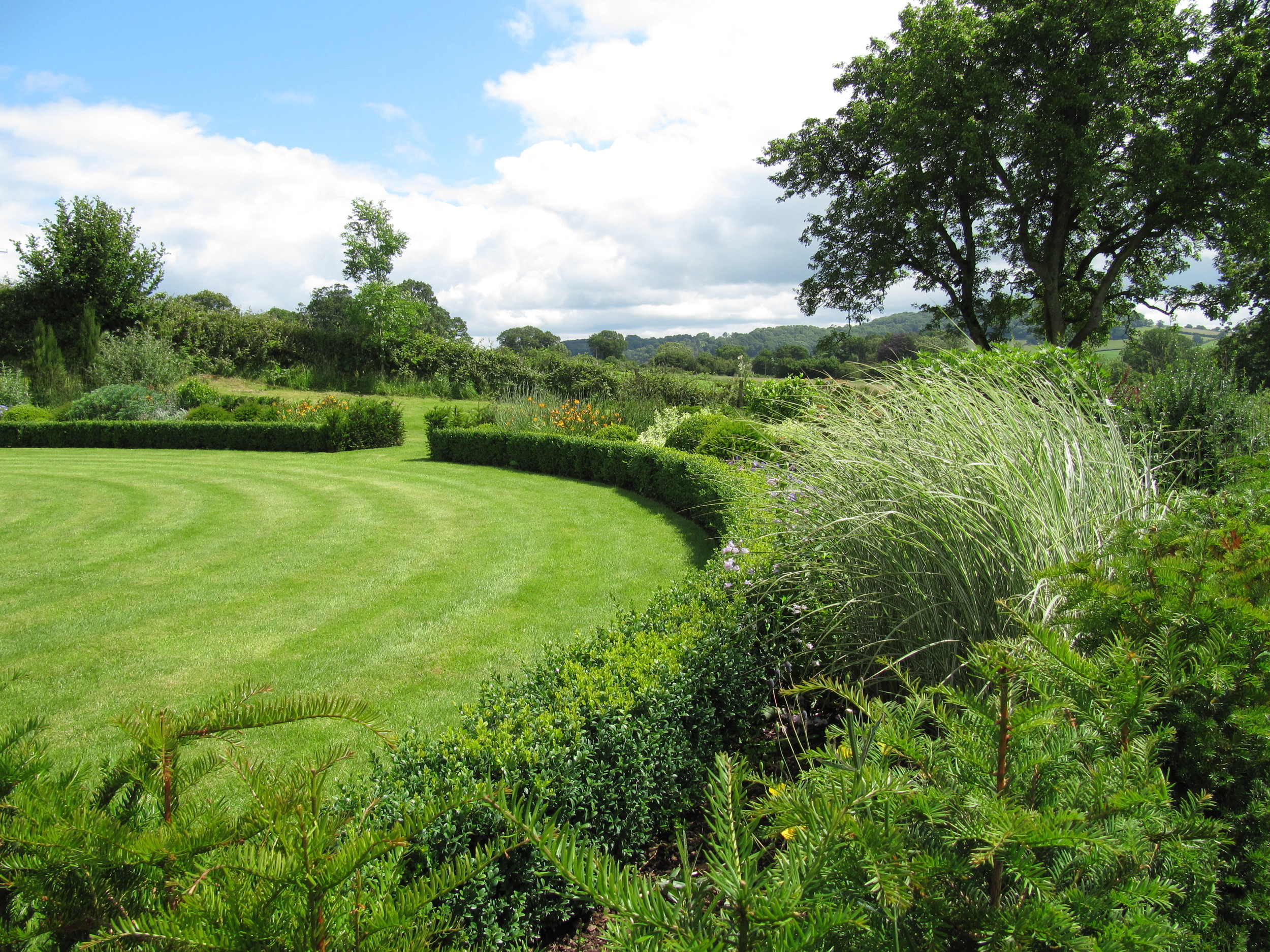 Clipped box hedging surrounding a circular lawn emphasis its dramatic shape.