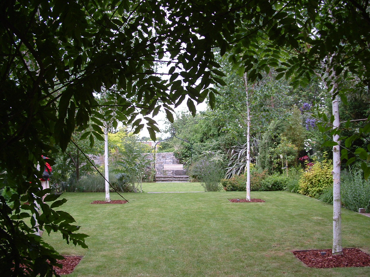 White birch trees, Betula 'Jaqumontii' frame the view over a formal lawn to a secluded arbour seat.
