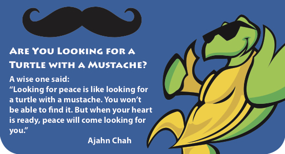 TPeace- MustacheStory-graphic.jpg