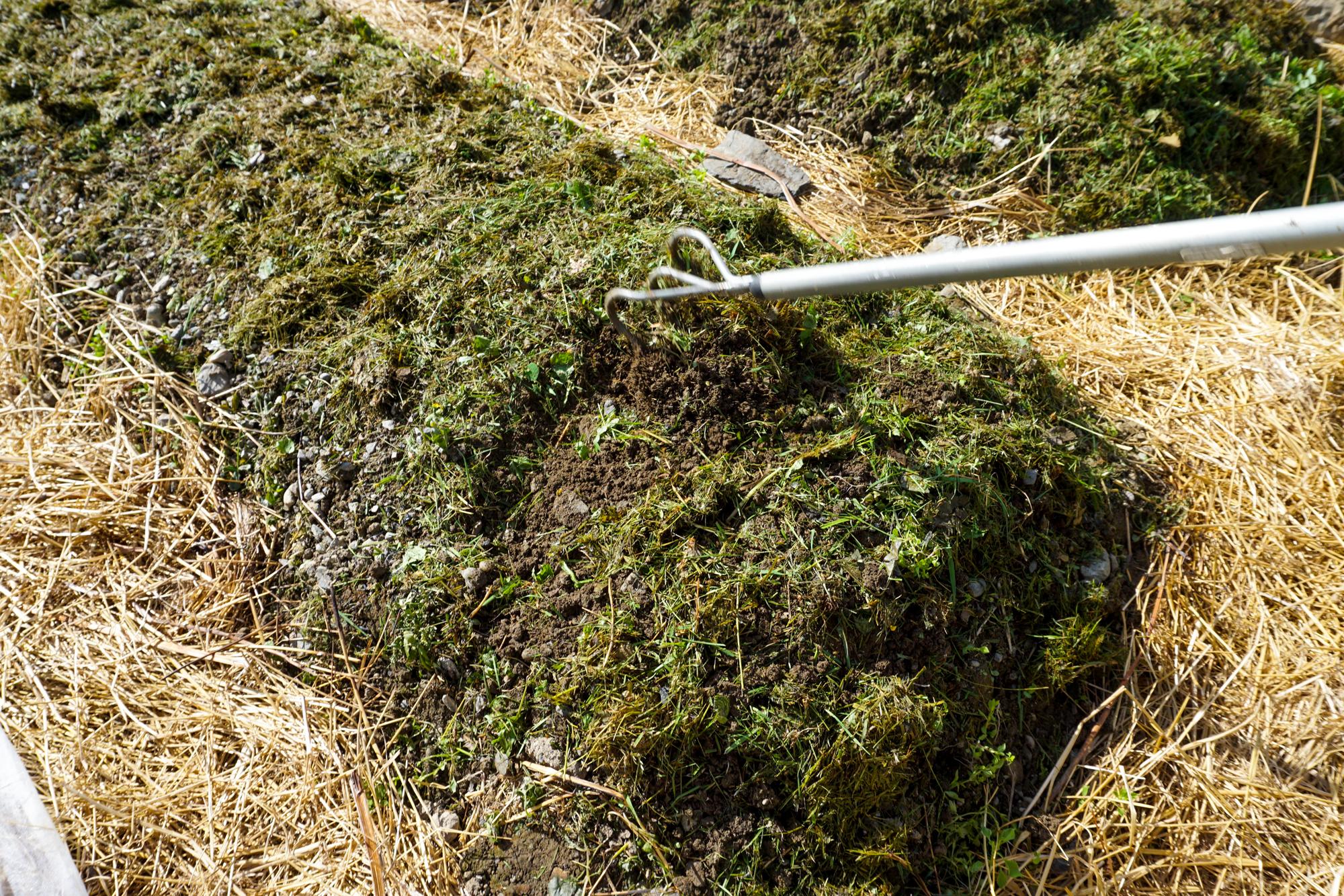 Vår jord er leirholdig og danner fort en hard skorpe. Blander derfor litt gress inn i overflaten før vi dekker.