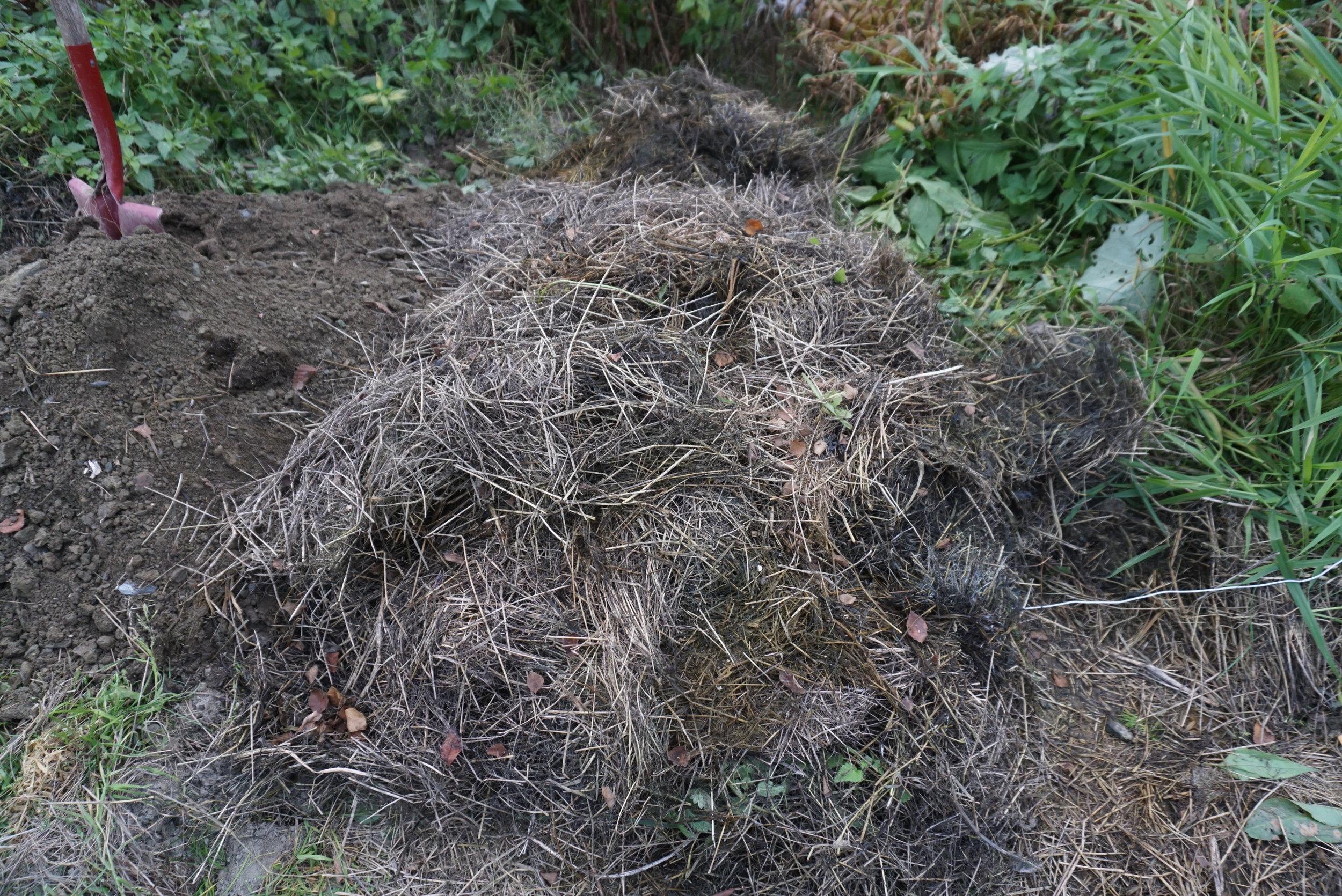 Et godt lag tørt gress.