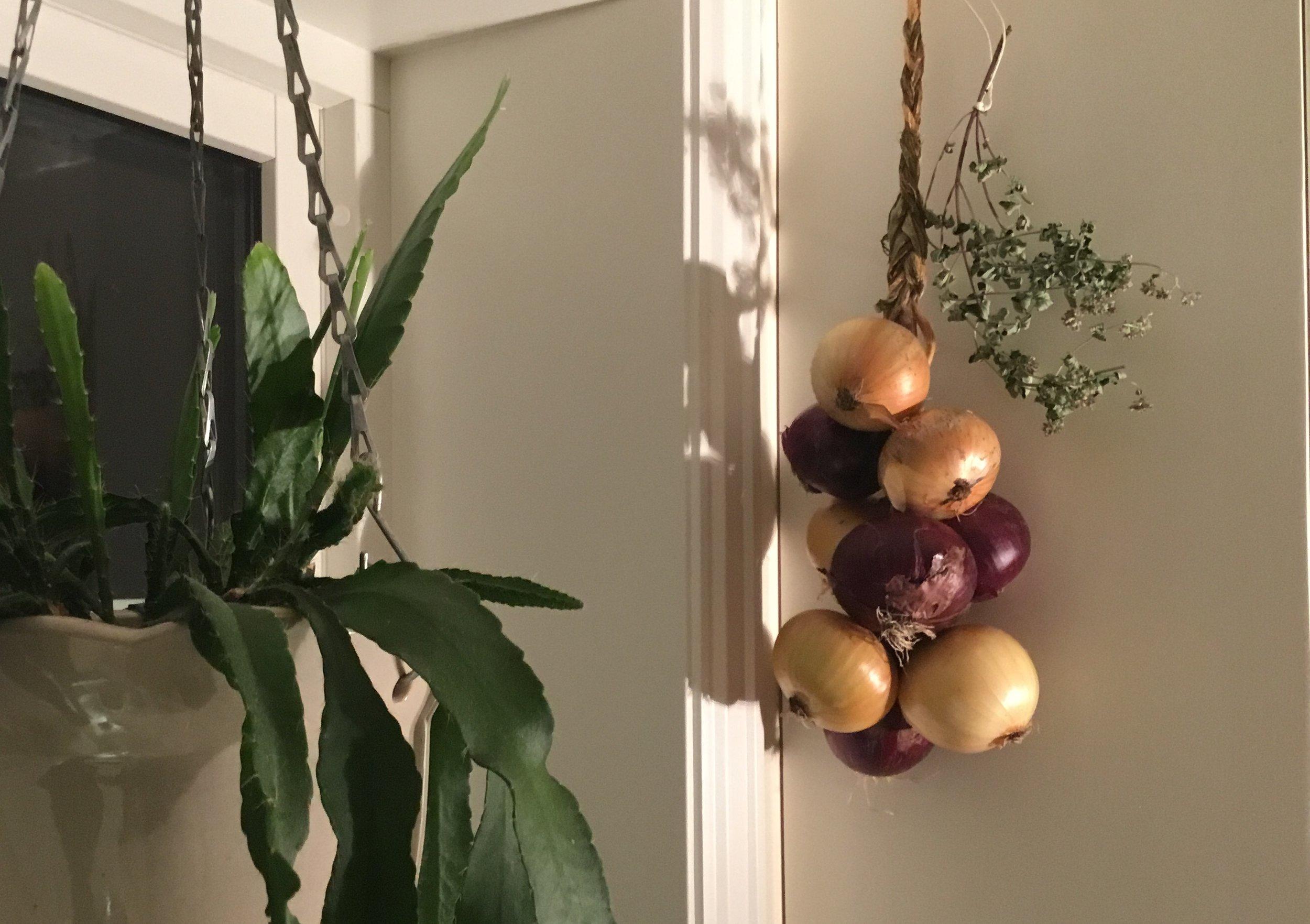 I Øst Europa henger ofte løkfletter og bunter med urter rundt på veggene.