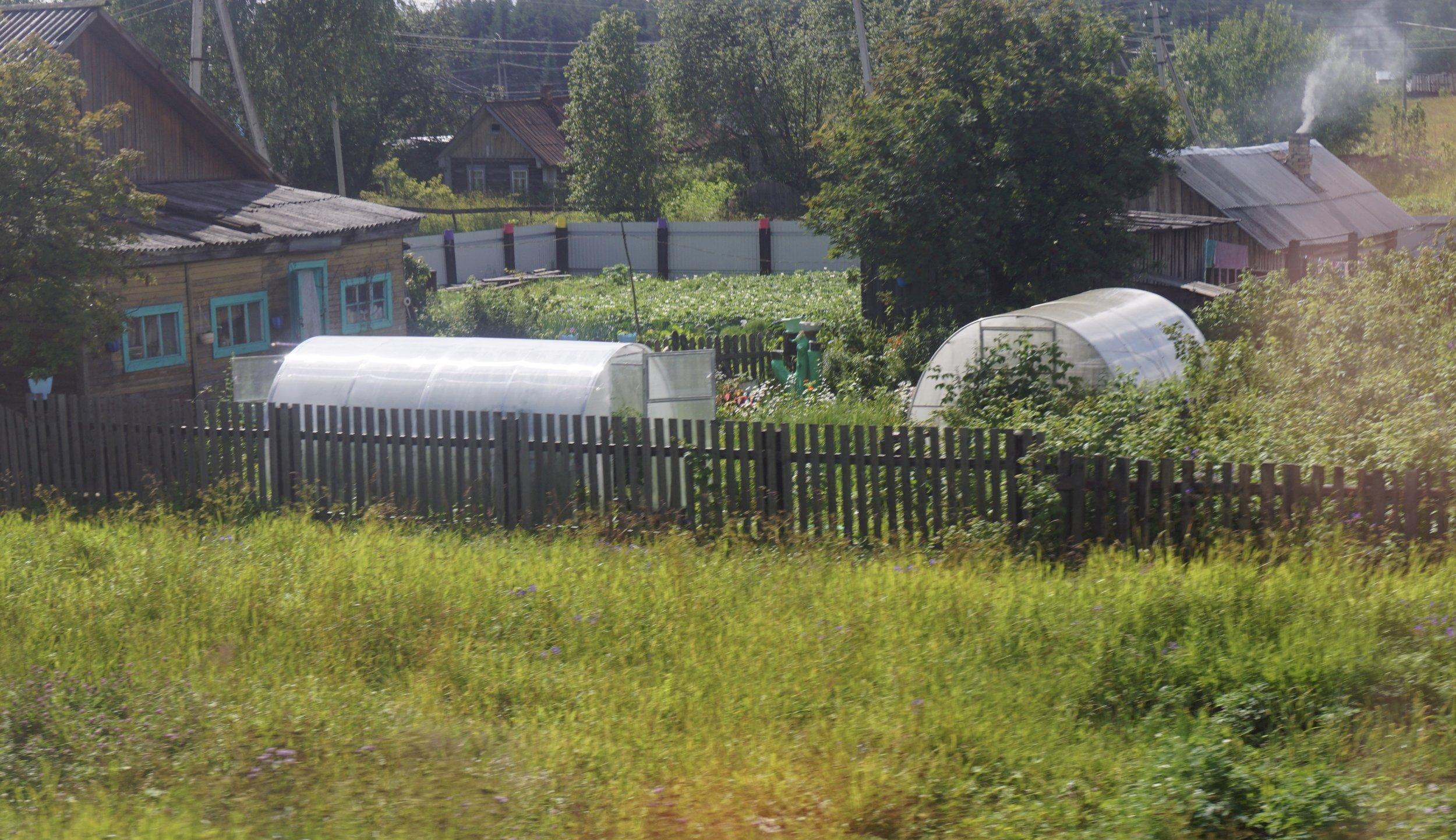 Langs jernbanen mellom Moskva og Arkhangelsk dukker mange frodige kjøkkenhager opp. Nesten alle med veksthus.