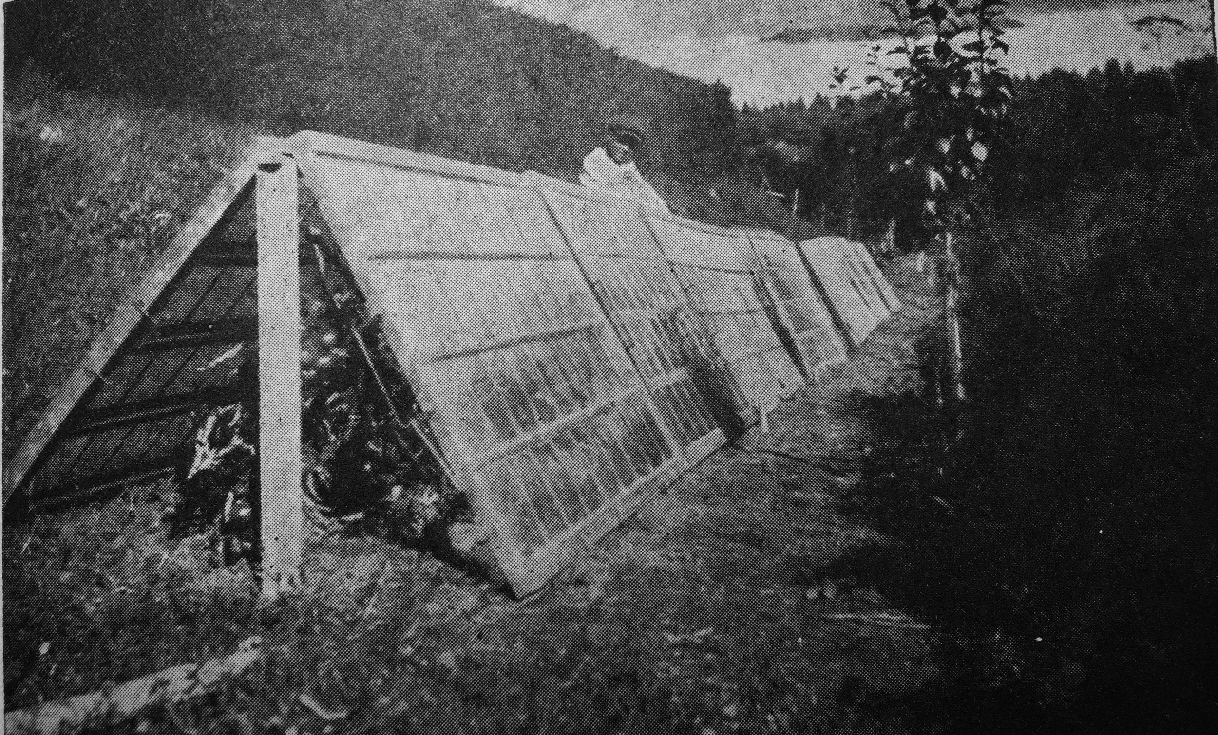 Gjenbrukte vinduer er en gammel måte å lage enkle veksthusløsninger på. Bilde fra 1930 tallet.