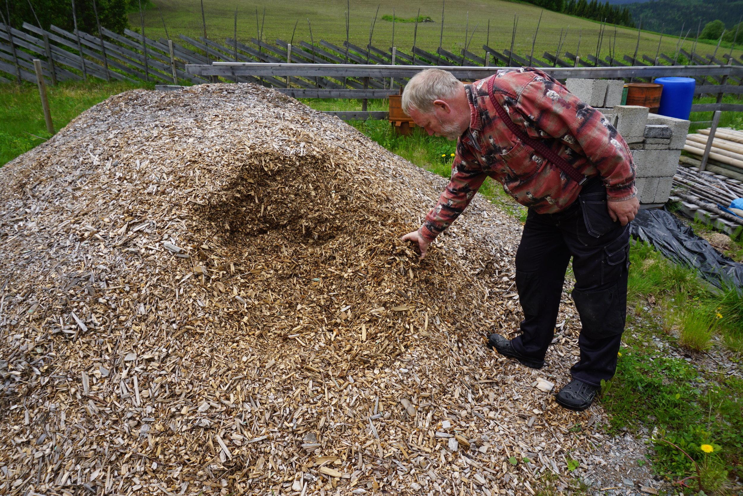 En stor haug med treflis skal forbrennes til bio-kull gjennom sommeren.