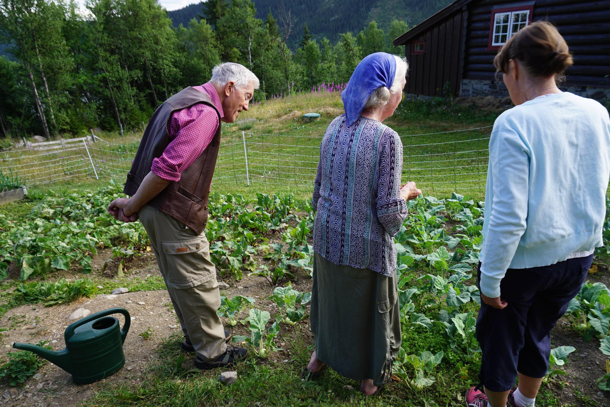 Odd og Aagot dyrker, erfarer og deler av sine kunnskaper. Bilde fra august 2018