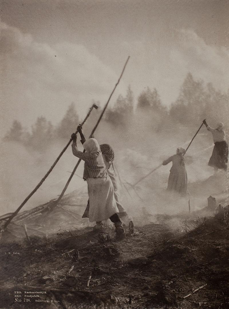 Svedjebruk i Finland, 1892. Foto: I. K. Inha