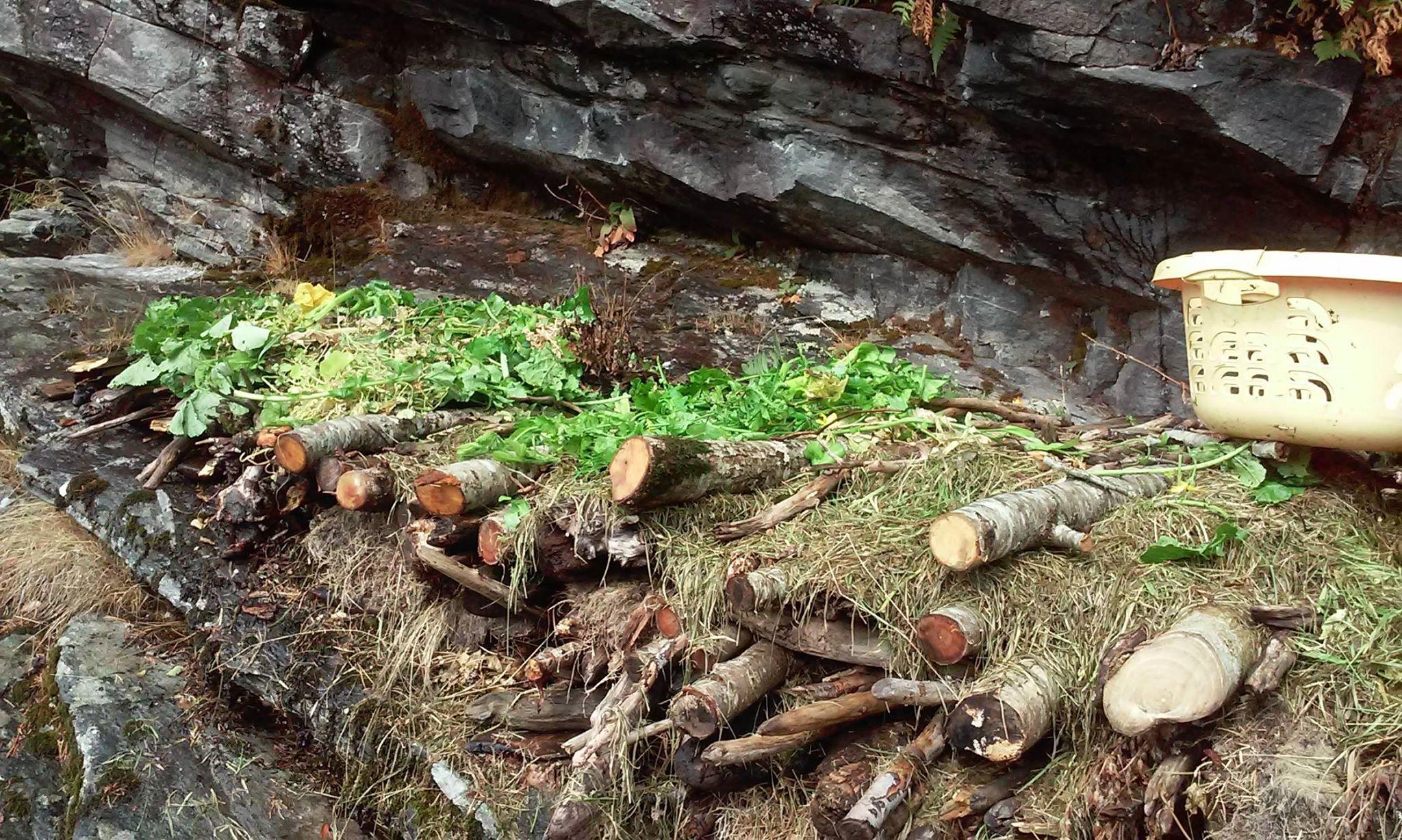 Hügelbed gjør det mulig for meg å utnytte de mest utenkelige stedene til dyrking - slik som på denne fjellhyllen.