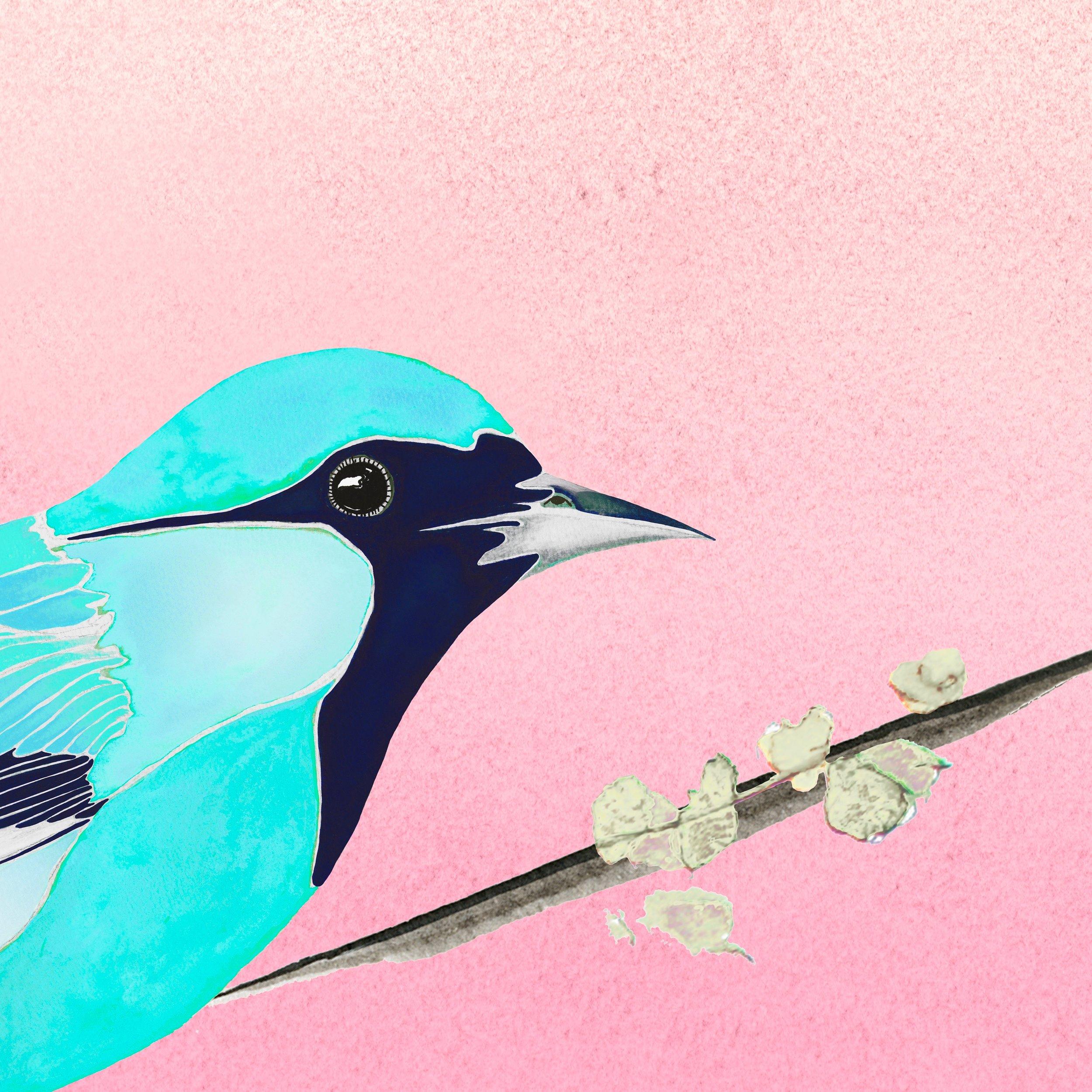 Oriole print - bright blue.jpg