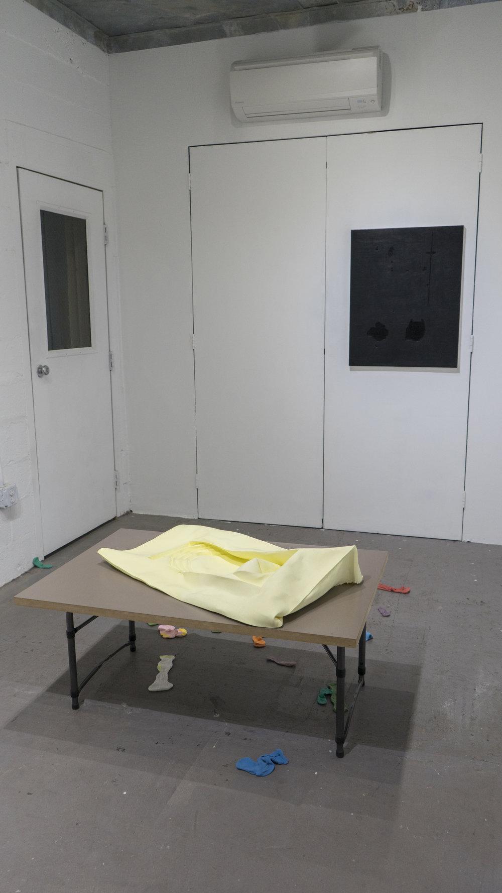 John Dickinson  Yellow Pool  (2016), Bridget Bailey  Kitchen Table-Floor-Bed-Socks (2017), Douglas Degges  Barbara White  (2015)