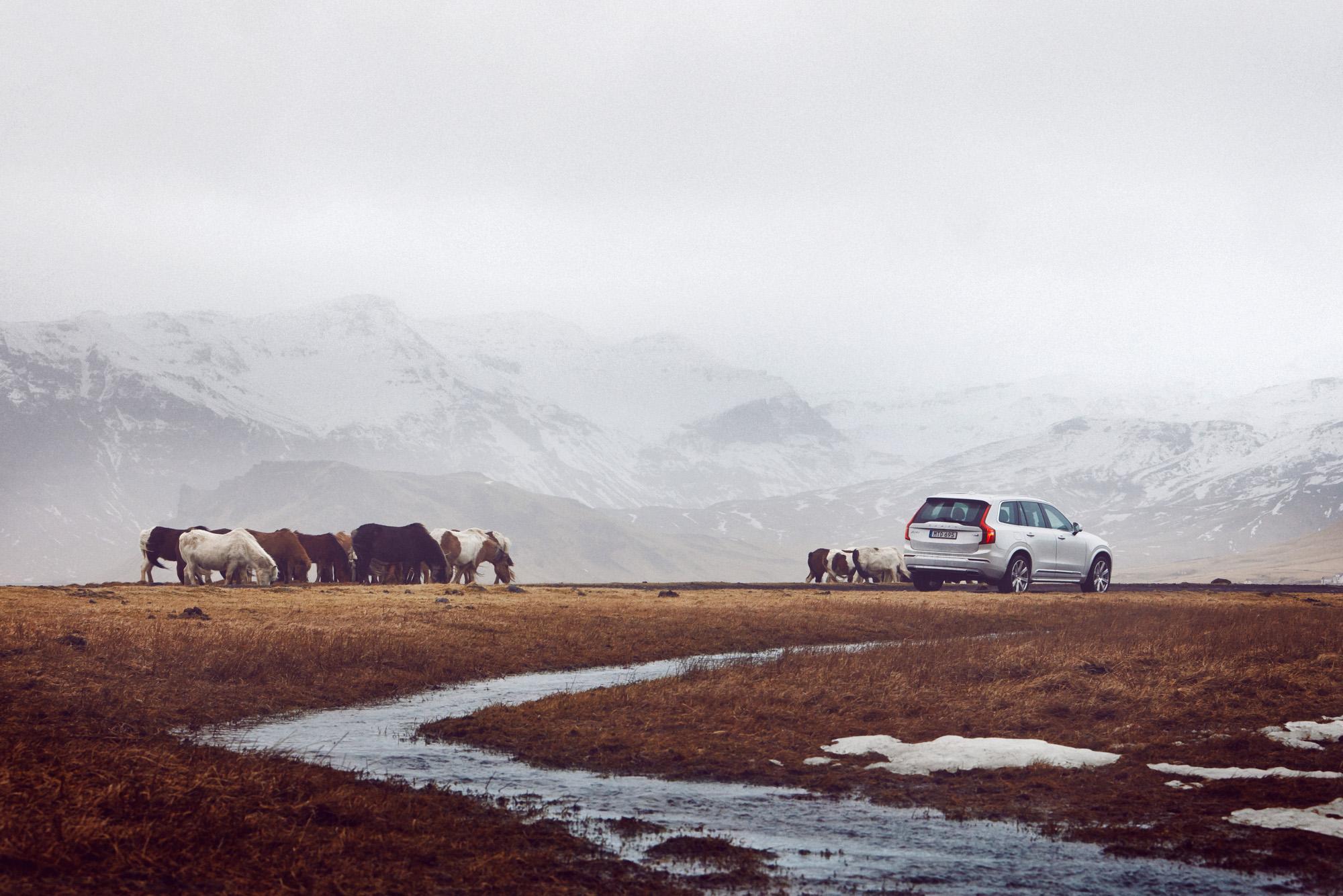 Volvo XC90 Iceland