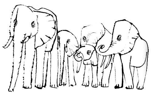 elephants-shahn