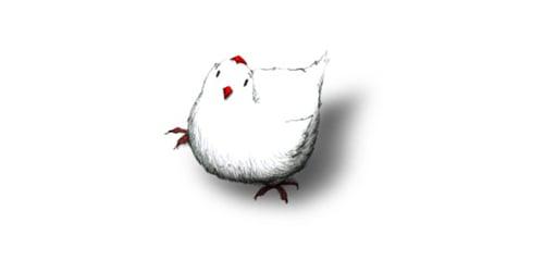 chicken.010411