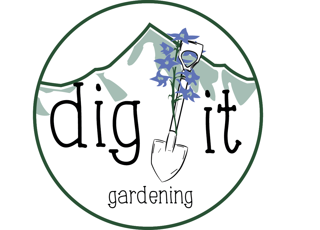Dig It! - A logo designed for a Telluride-based gardening business