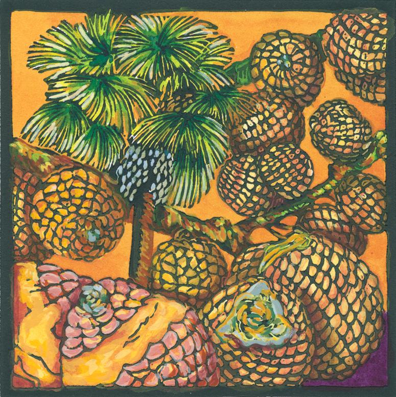 Ita Palm