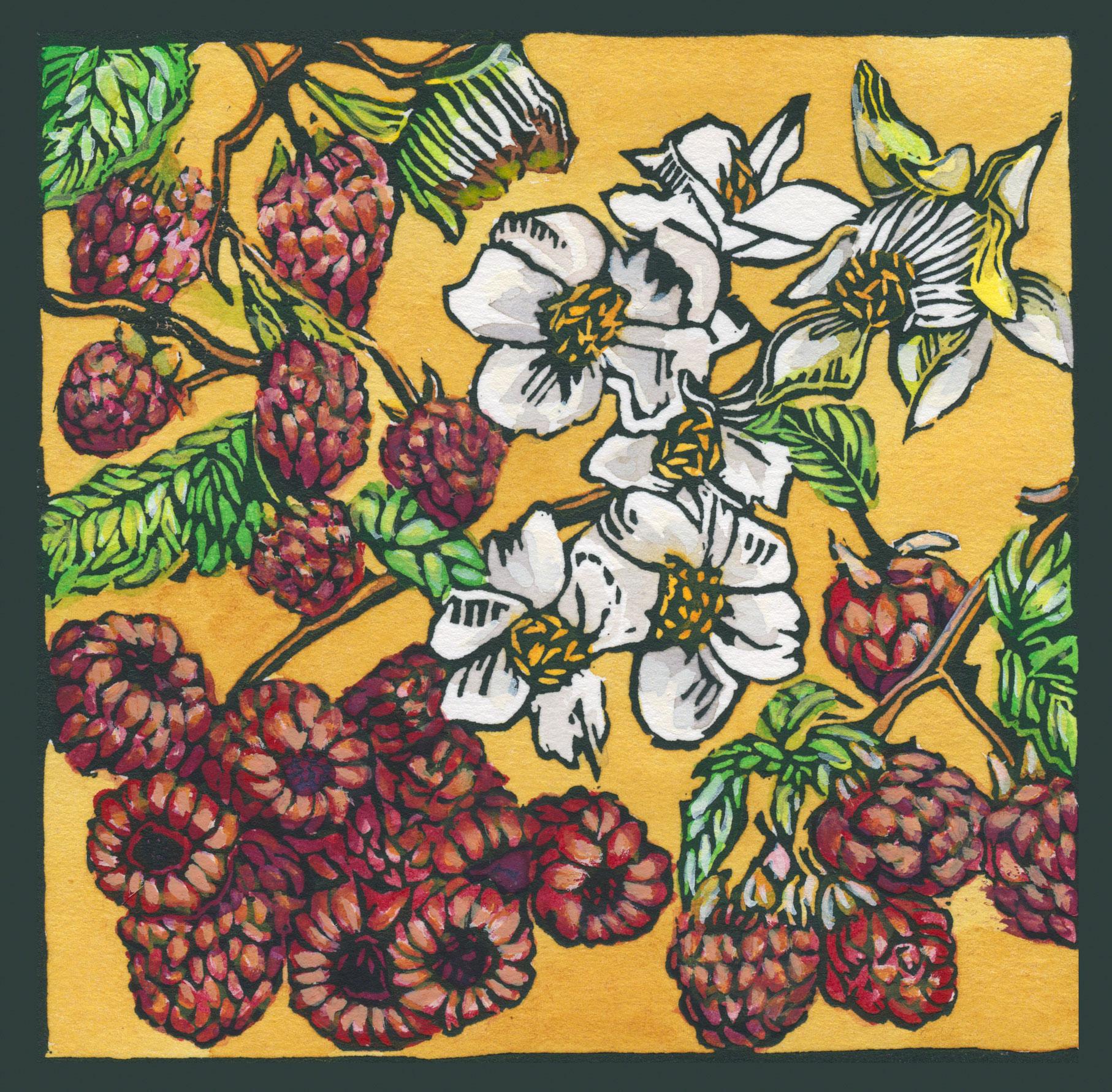 Raspberries 1