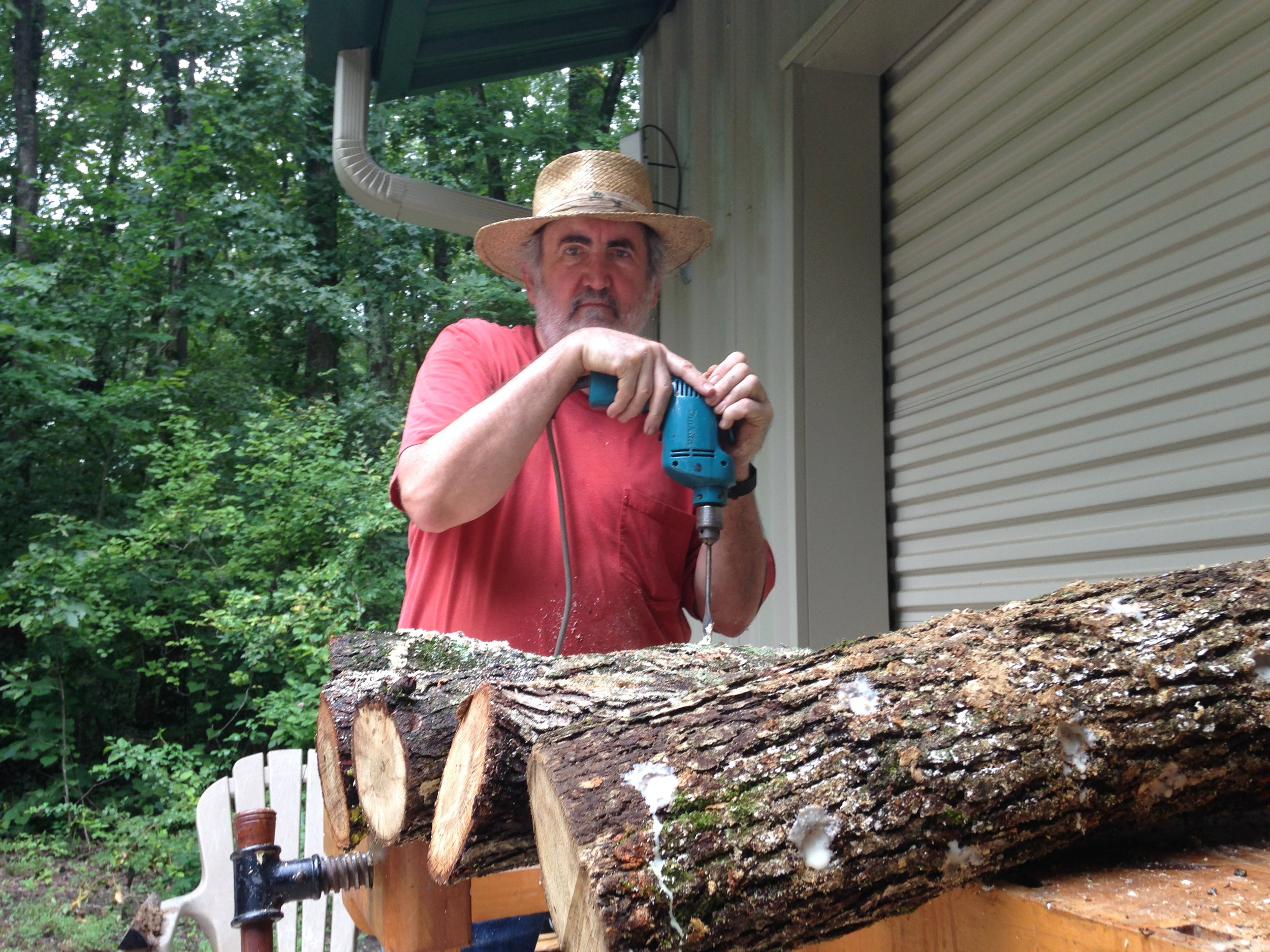 Preparing mushroom logs