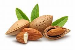 sweetalmondnut.jpg