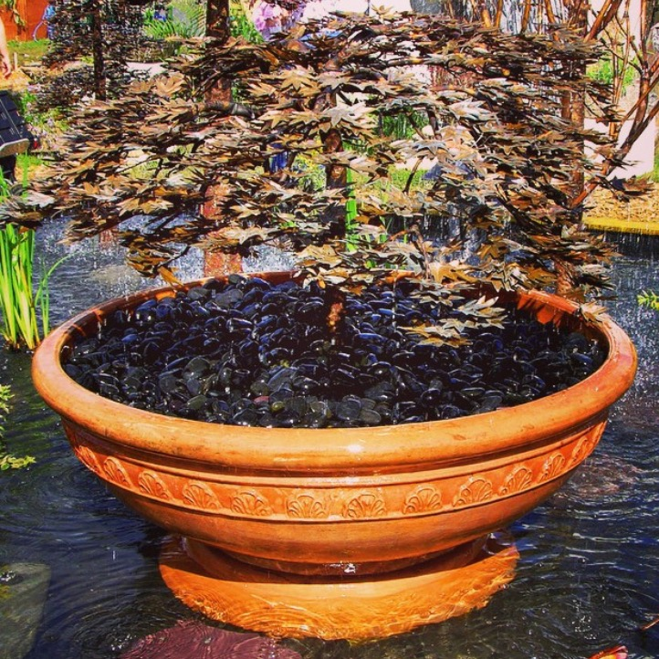 japanese-maple-tree_copper-water-malibu-fountains.png