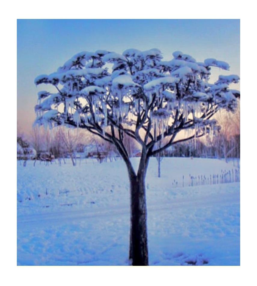 Winterizing+Tree+Fountain.jpg