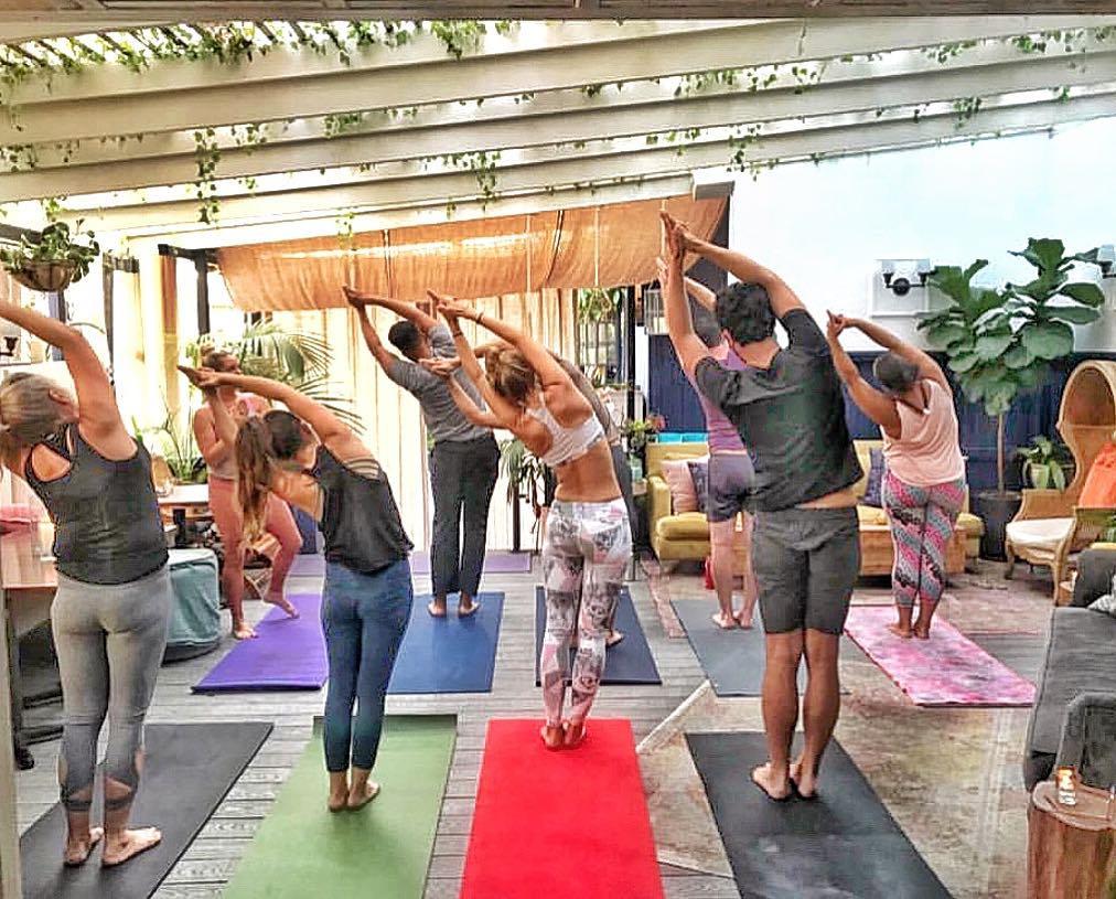 yoga brunch venice .jpg