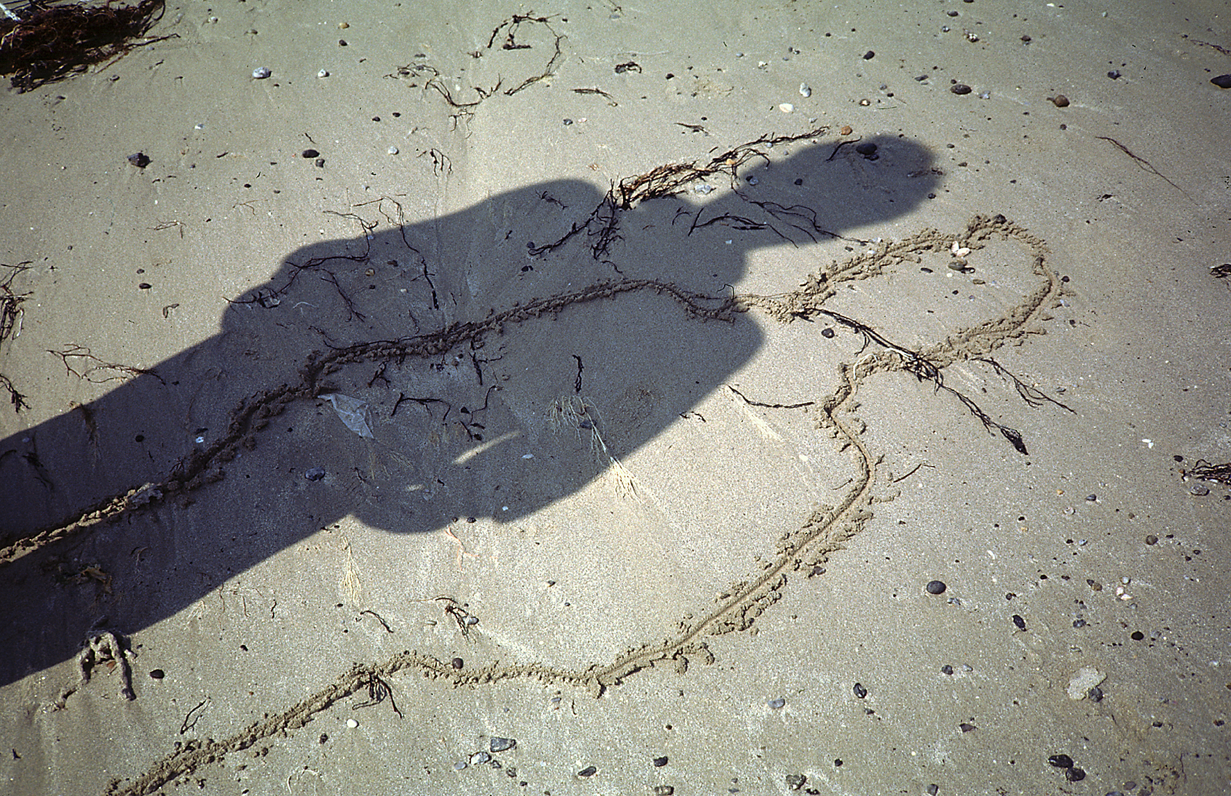 Drawings in the Sand, 1991