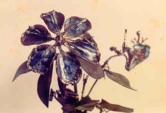 Flowersdetail.jpg