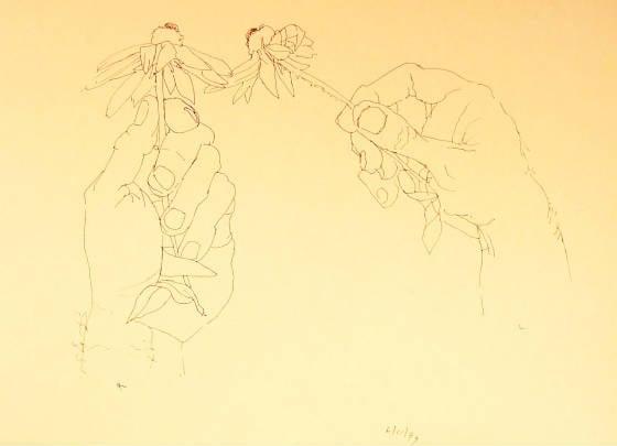 Hands1.JPG.w560h405.jpg