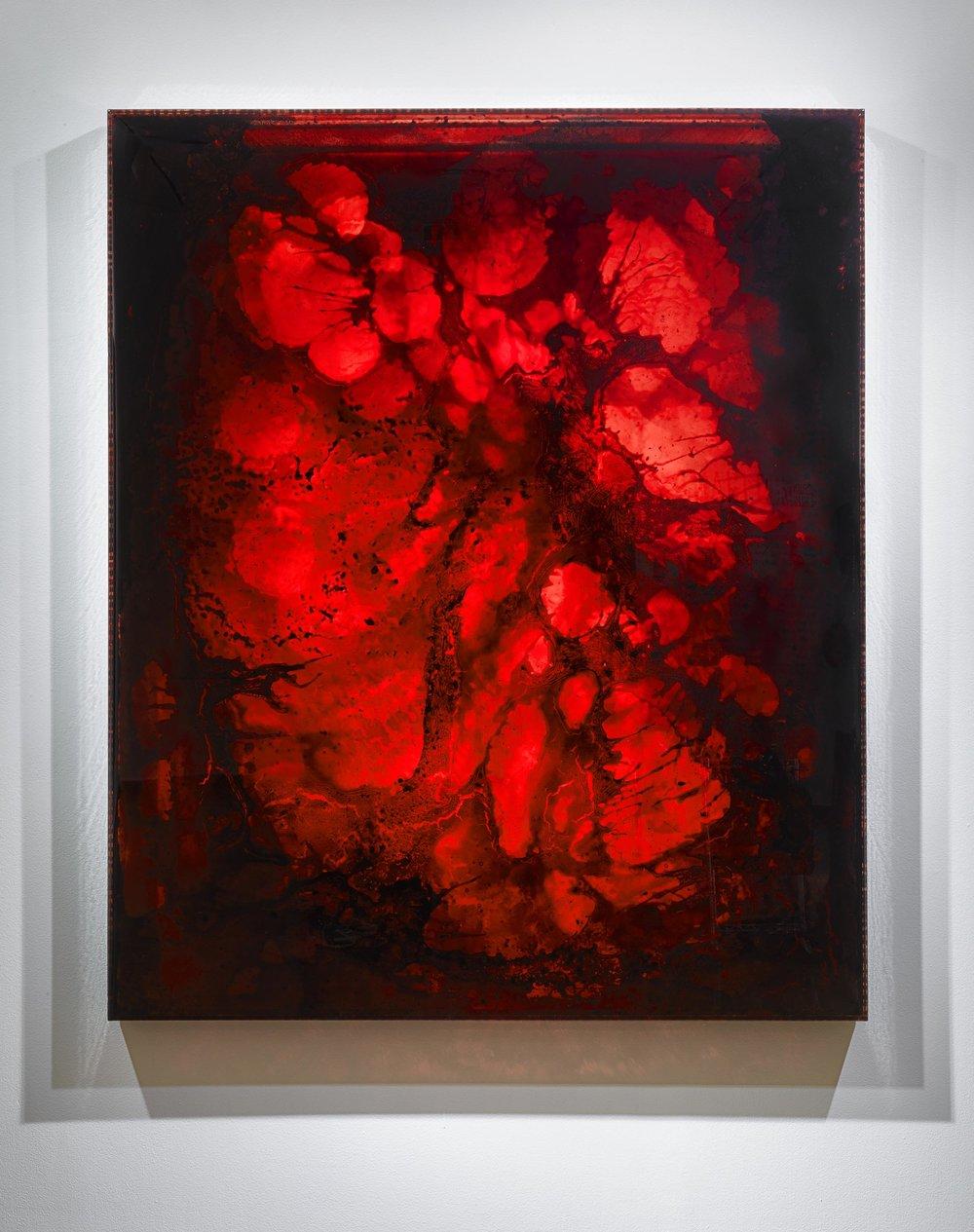 "LIFE FORCE 2012-2 ,  2012  72 x 60 x 3""  blood, copper, preserved on plexiglass, UV resin"