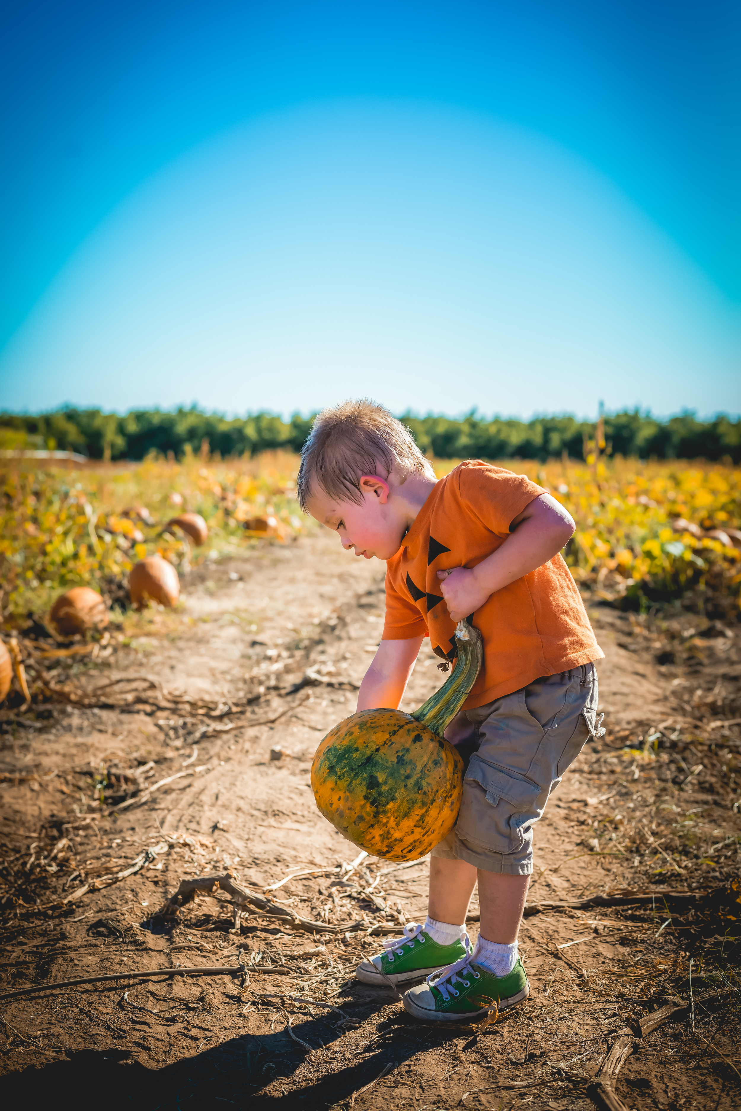 Picking out his pumpkin on a hot October day!