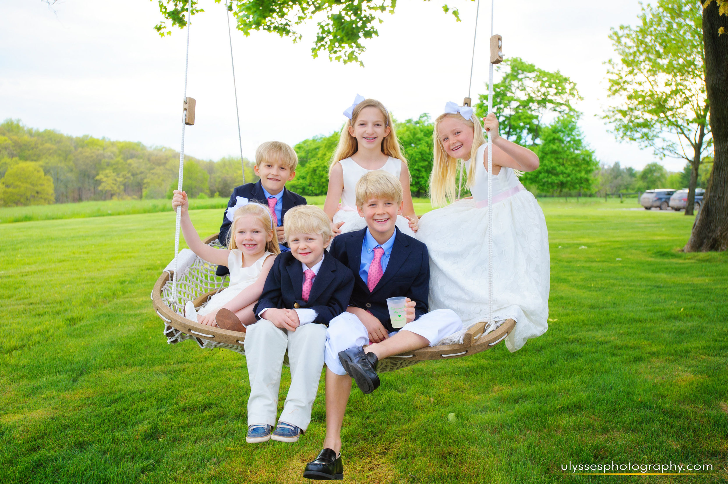 15 At Home Wedding Cousins Wedding Party Swing NJ Wedding Planner.jpg