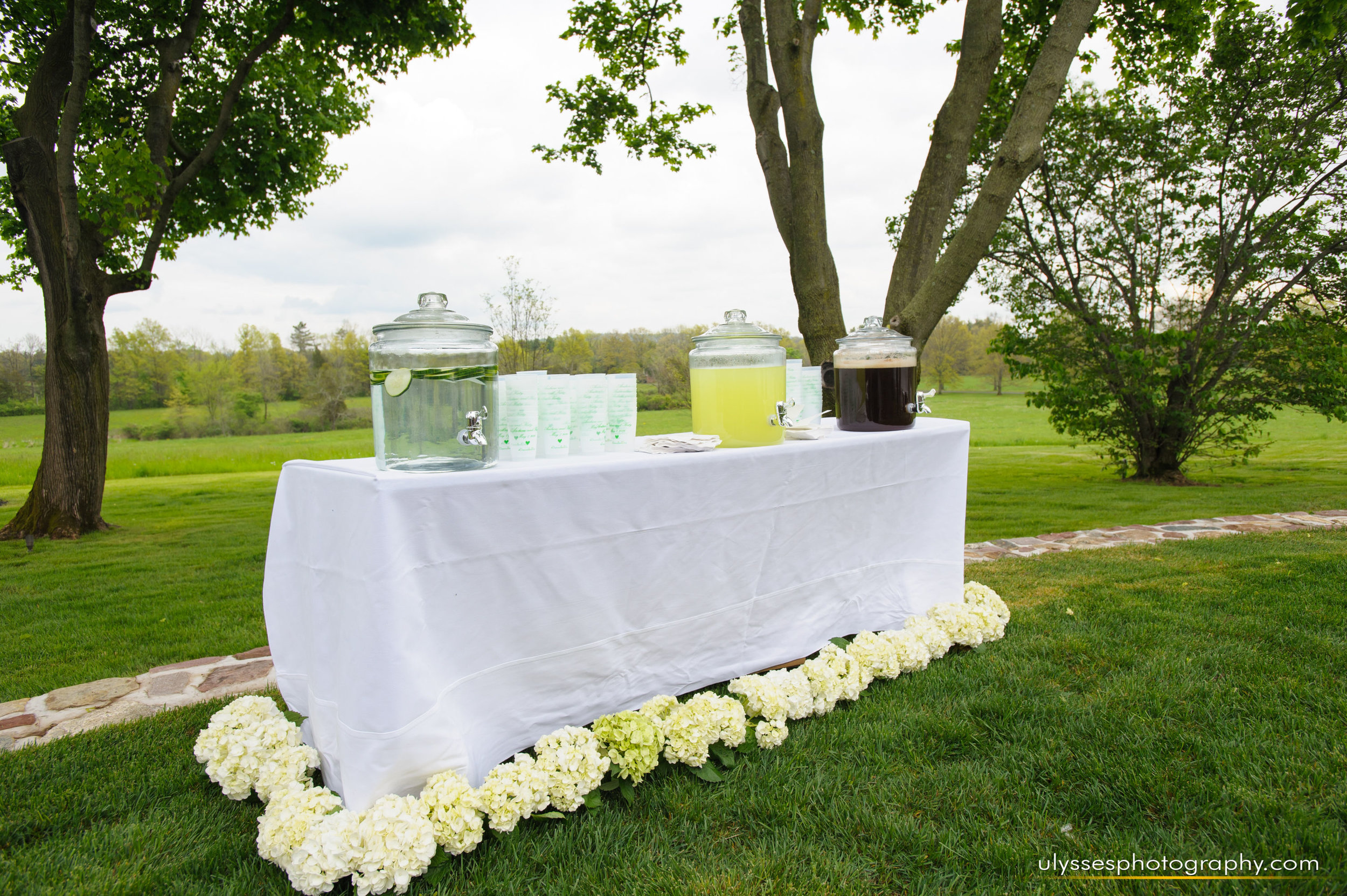 18 At Home Wedding Welcome Drinks Outdoor Ceremony.jpg