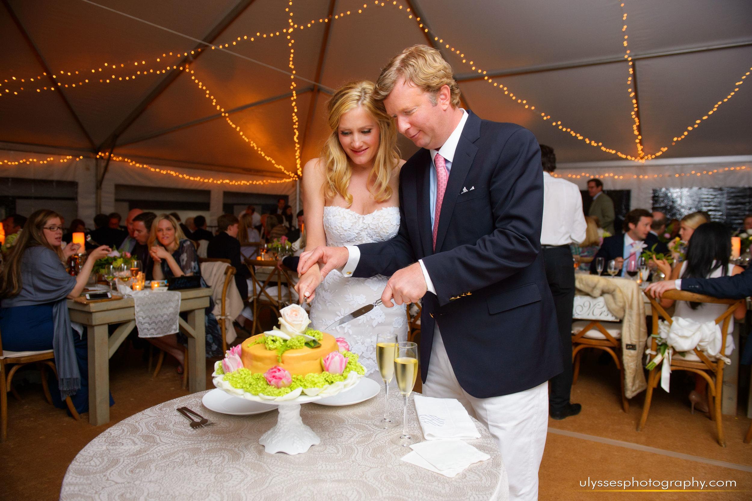 31 At Home Wedding Farm Wedding Tent Reception Cake Cutting.jpg