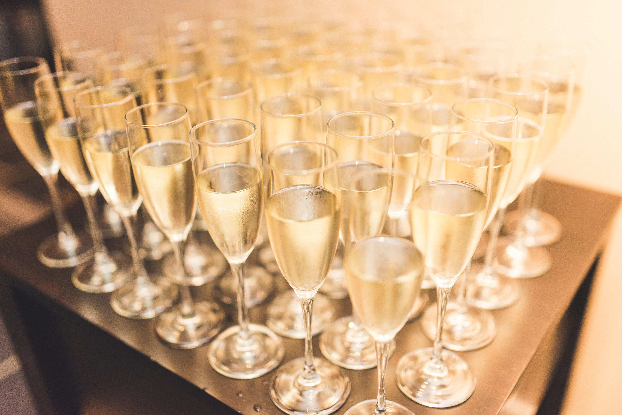 24 At Home Wedding Champagne Toast Philadelphia Wedding Planner.jpg