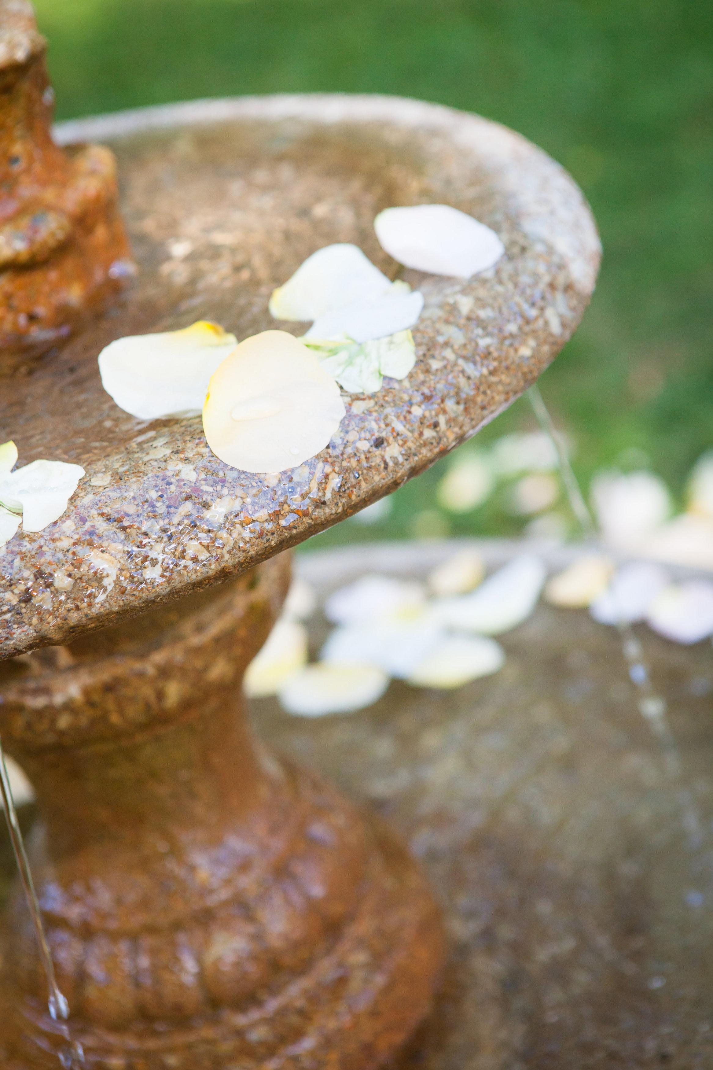 13 Philadelphia Wedding Planner Rose Petal Fountains Outdoor Ceremony.jpg