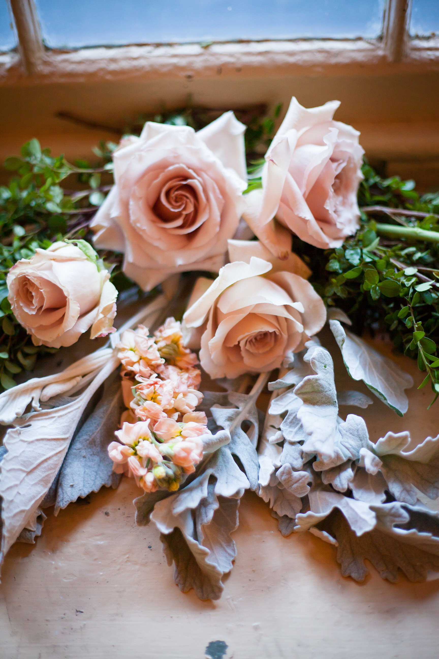 73 Creme and Pale Pink Roses Dusty Miller Wedding Garland.jpg