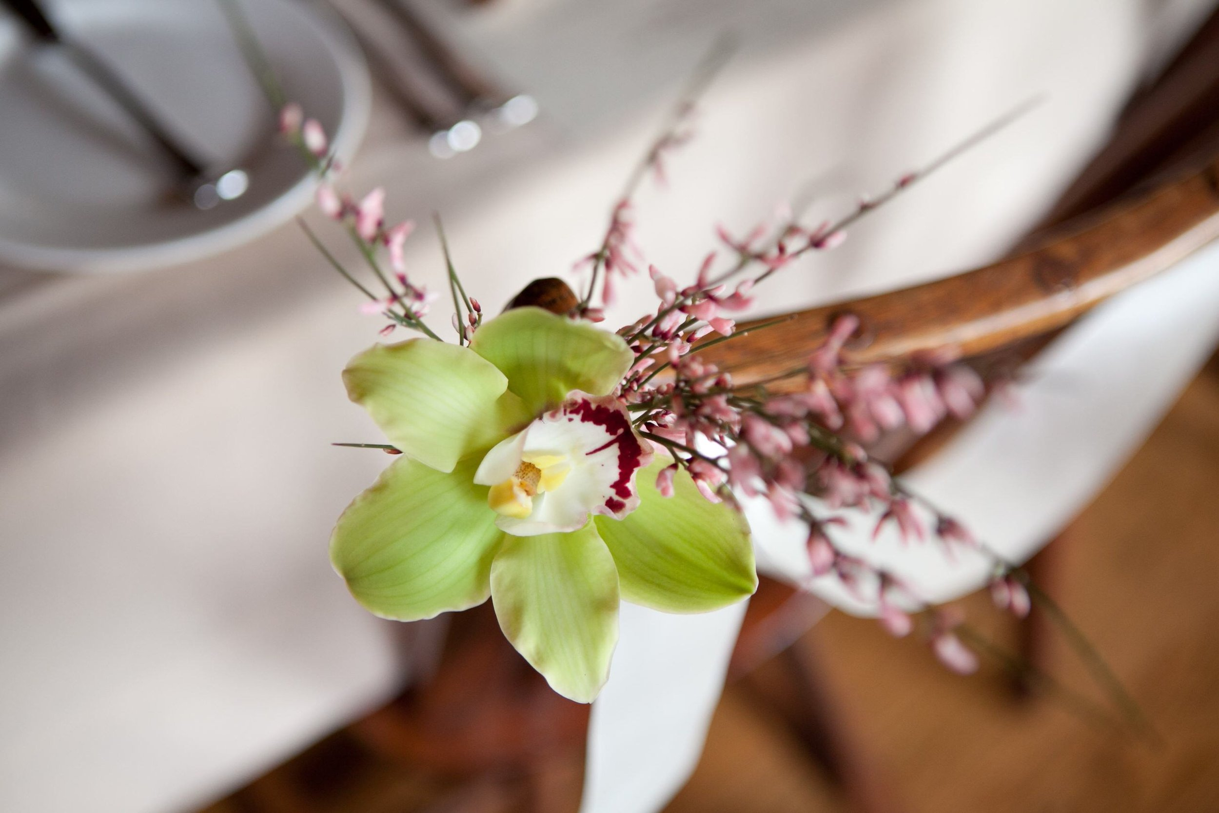 11 Green Orchid Anniversary Party Chester County Event Planner.jpg